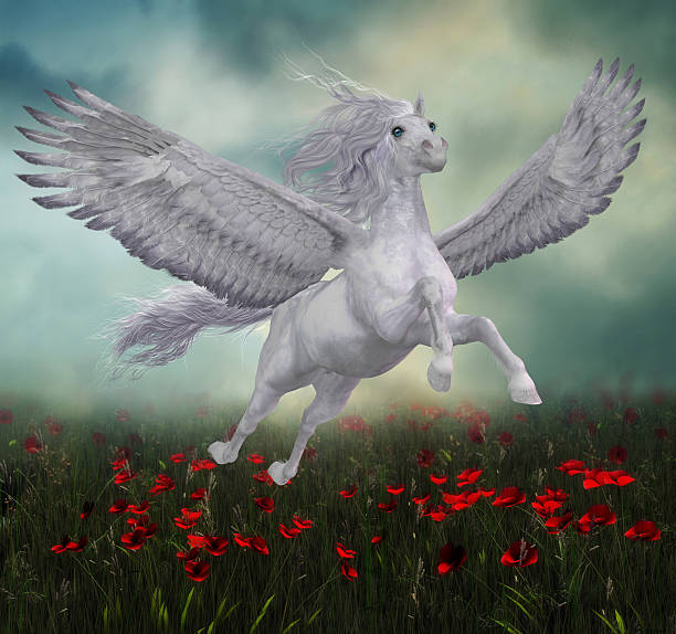pegasus and red poppies - pegasus stock photos and pictures