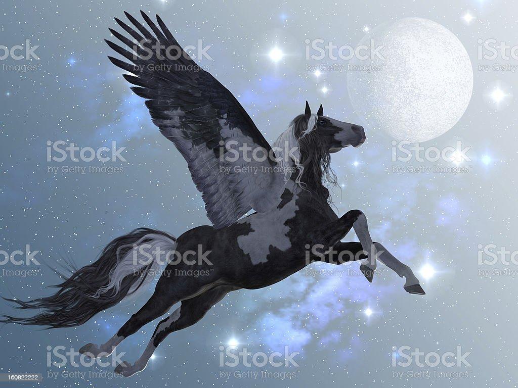 Pegasus Flight stock photo