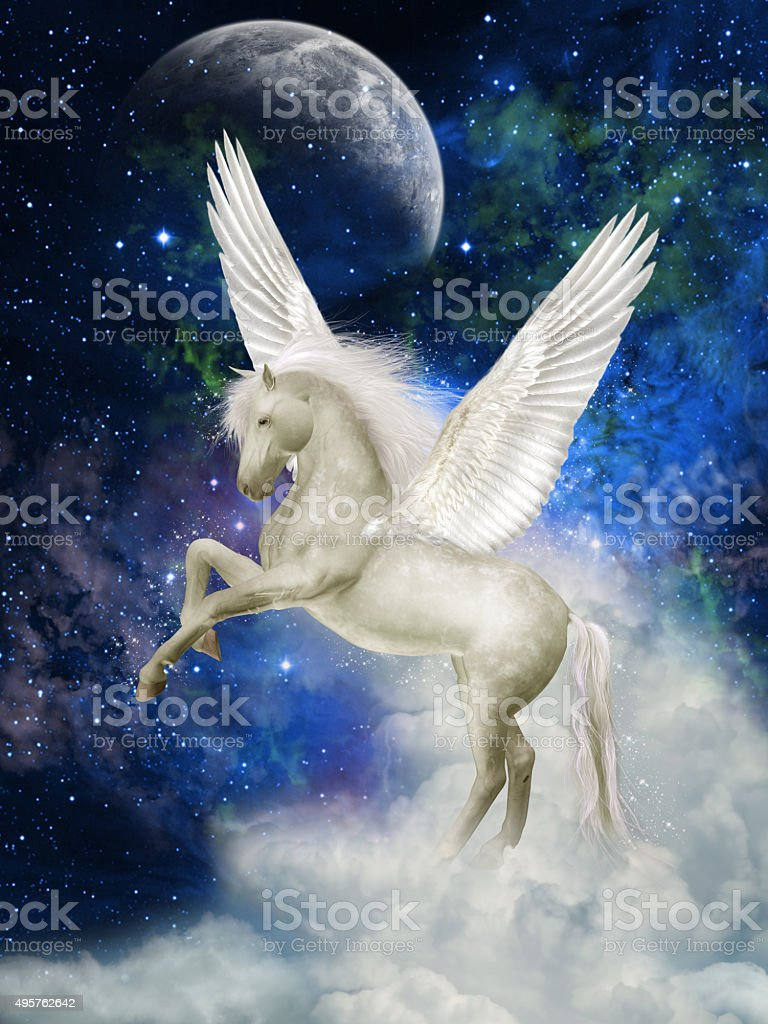 Pegasus stock photo