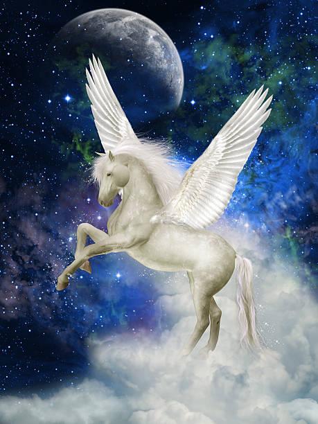 pegasus - unicorns stock photos and pictures