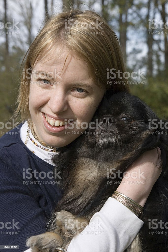 Peke and Pal royalty-free stock photo