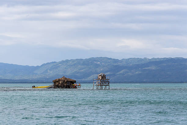 Pelican Bar with Jamaican mountains stock photo