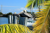 Pelicans Resting on Wood Pilings in Water at Key West, Florida