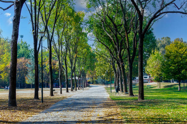 Pellerina public park in Turin (Piedmont, Italy). stock photo
