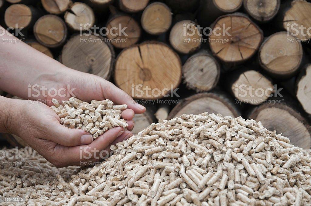 Pelllets- biomass royalty-free stock photo