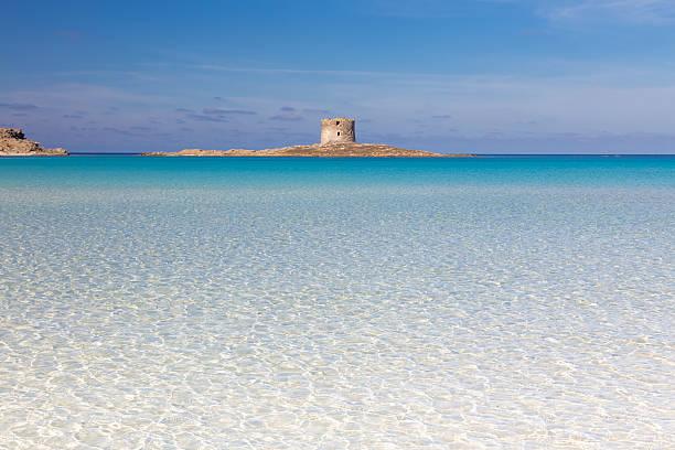 pelosa spiaggia, sardegna, italia. - sardegna foto e immagini stock