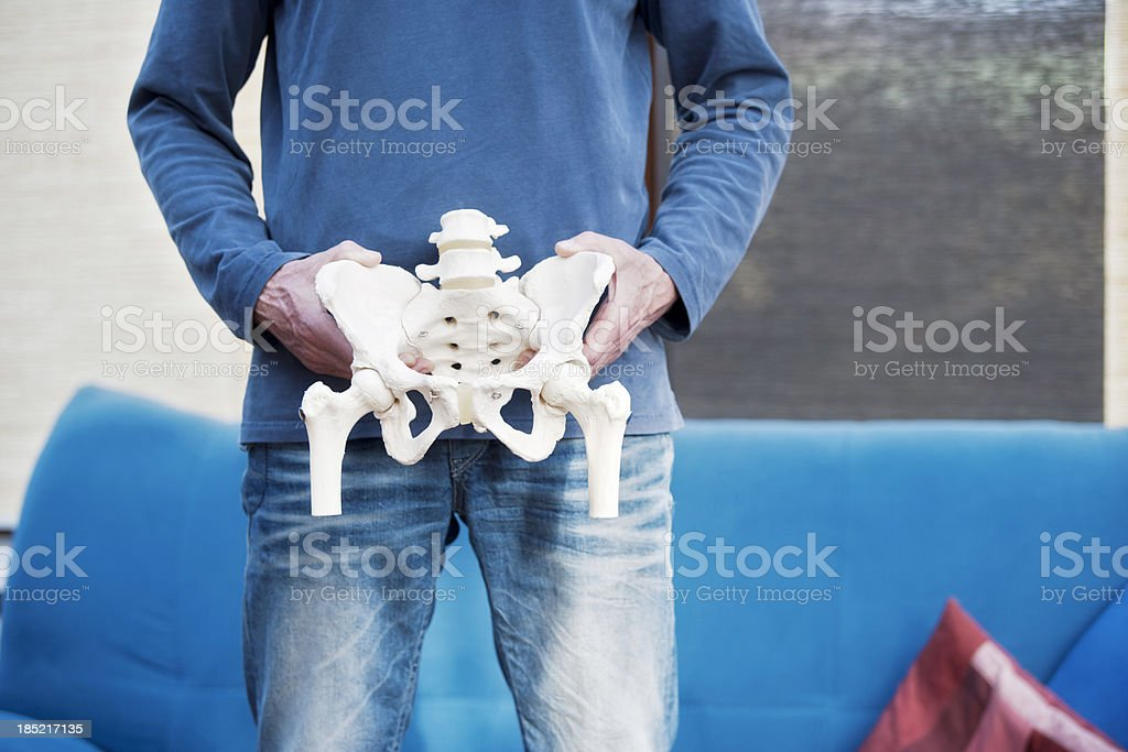 Pelvis royalty-free stock photo