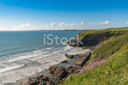 istock Pembrokeshire coast near Haverfordwest, Dyfed, Wales, UK 893395568