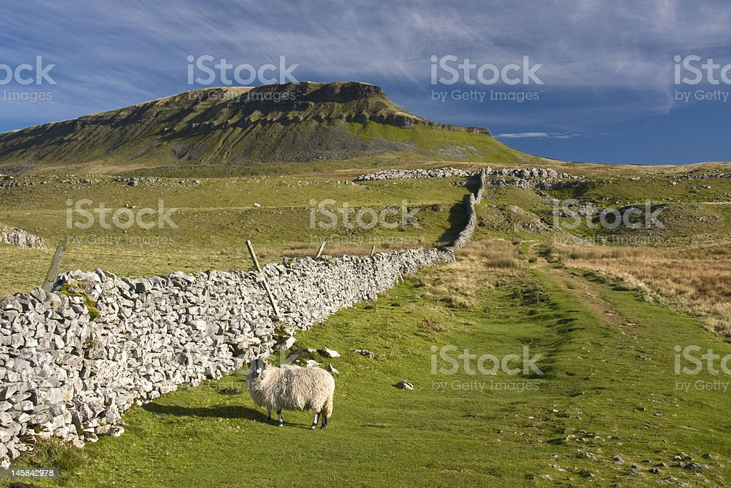 Pen Y Ghent hill , In The Yorkshire Dales , UK stock photo