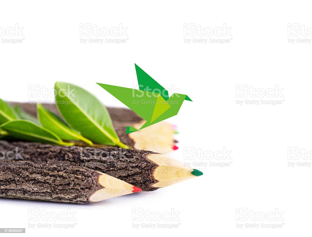 Pencil branches and paper bird on white background stock photo