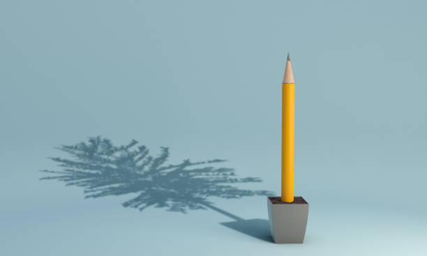 Pencil Growing From The Pot - Education Concept A pencil growing from the pot with tree shadow. ( 3d render ) ancestry stock pictures, royalty-free photos & images