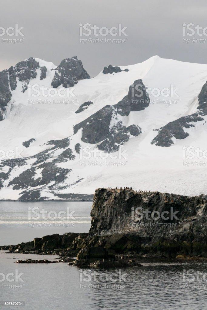Pinguin-Rock – Foto