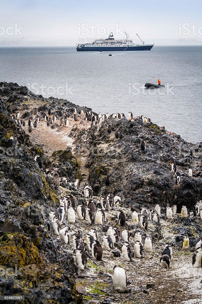 Penguin's and Boats in Antarctica stock photo