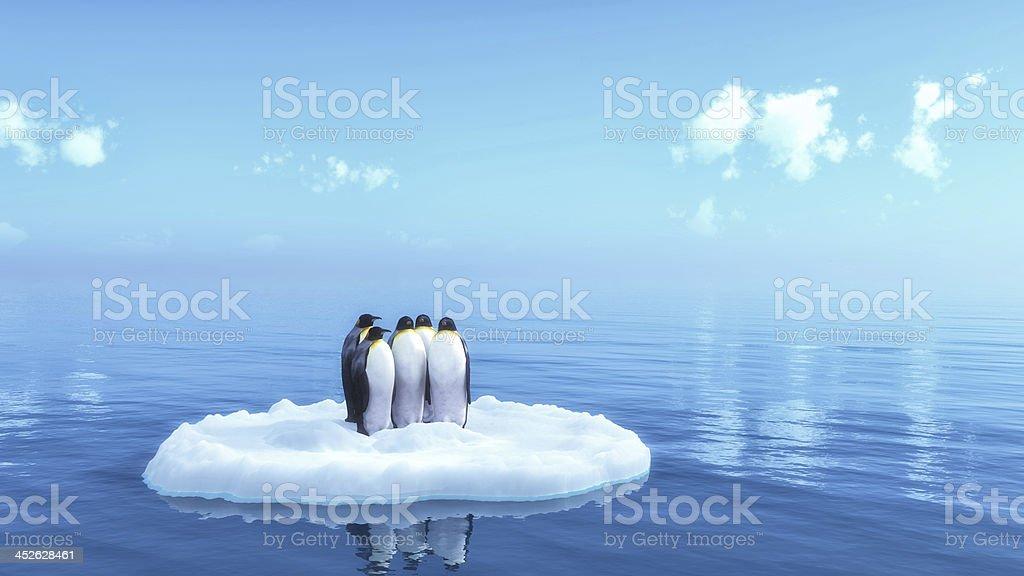 penguins圖像檔