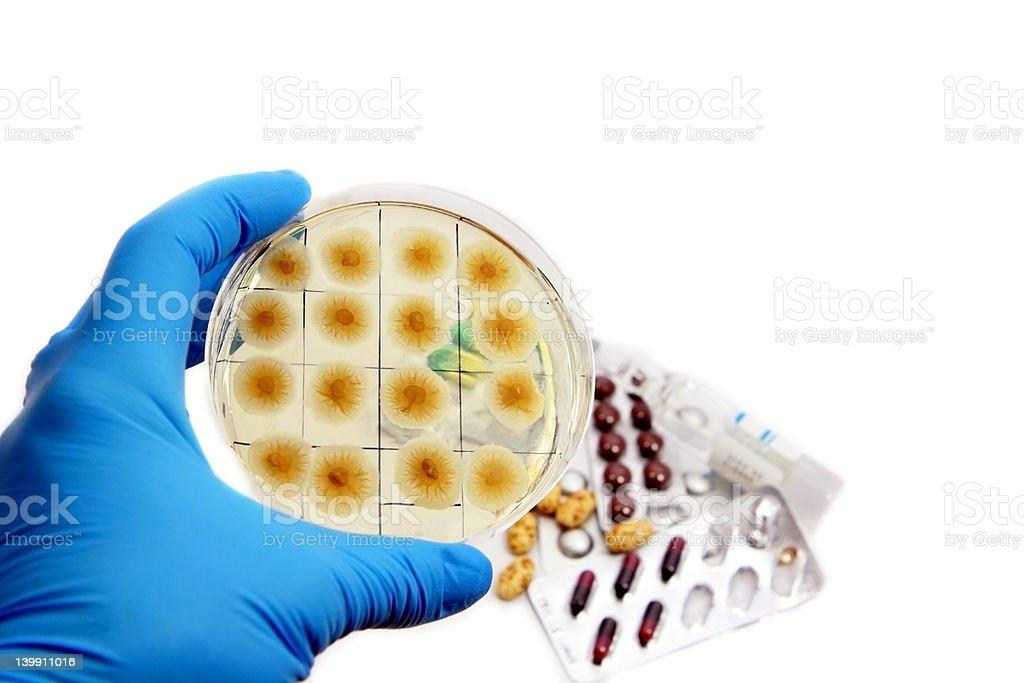 Penicillum fungi and pills stock photo