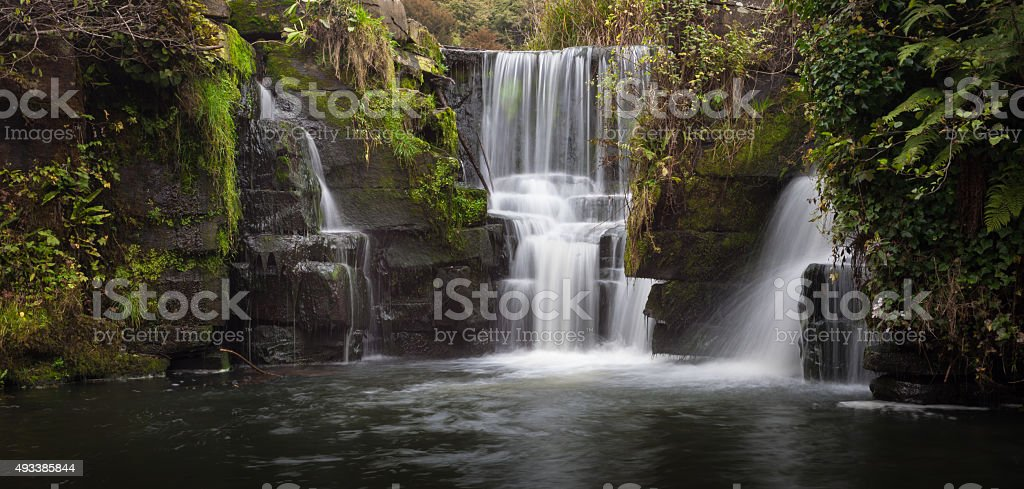 Penllergare Nature Reserve stock photo