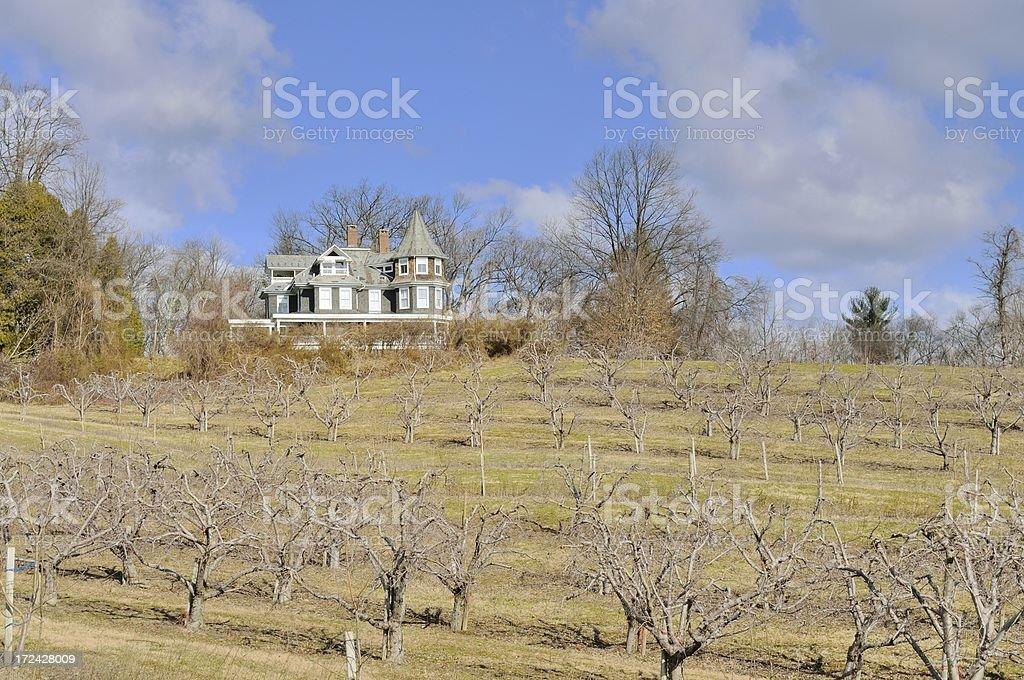 Pennsylvania Apple Orchard In Spring stock photo