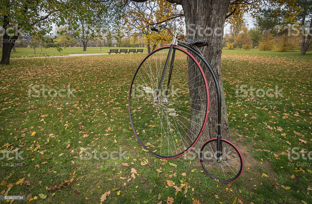 Penny-farthing bicycle in a park stock photo