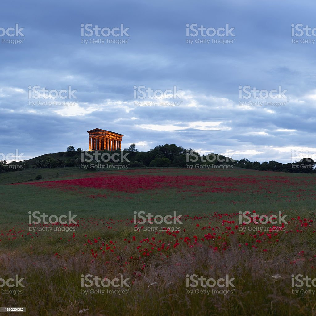 Penshaw Monument with poppy fields stock photo