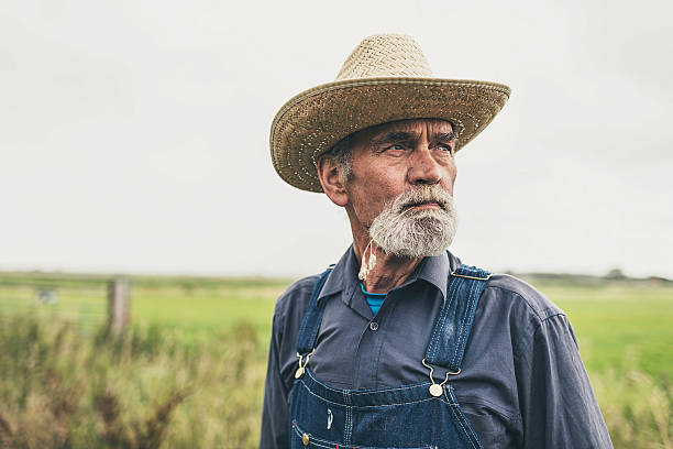Pensive Farmer at the Farm Looking into Distance stock photo