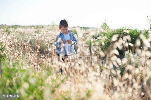 istock Pensive little boy stands in a field amongst plants 824756720