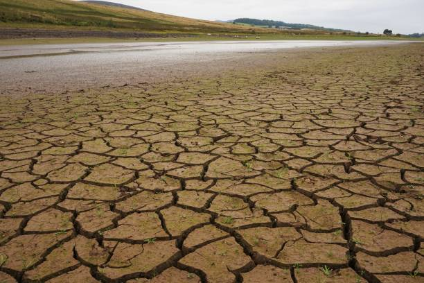 pentland hills drought - desiccation stock pictures, royalty-free photos & images