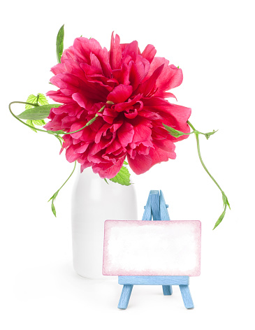 Peony Flower In White Vase And Small Easel With Paper Blank Isolated On White - Fotografias de stock e mais imagens de Amor