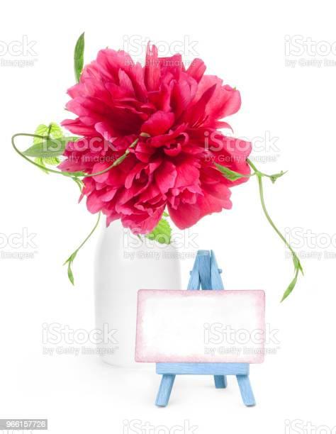 Pion Blomma I Vit Vas Och Liten Staffli Med Papper Tom Isolerad På Vit-foton och fler bilder på Alla hjärtans dag