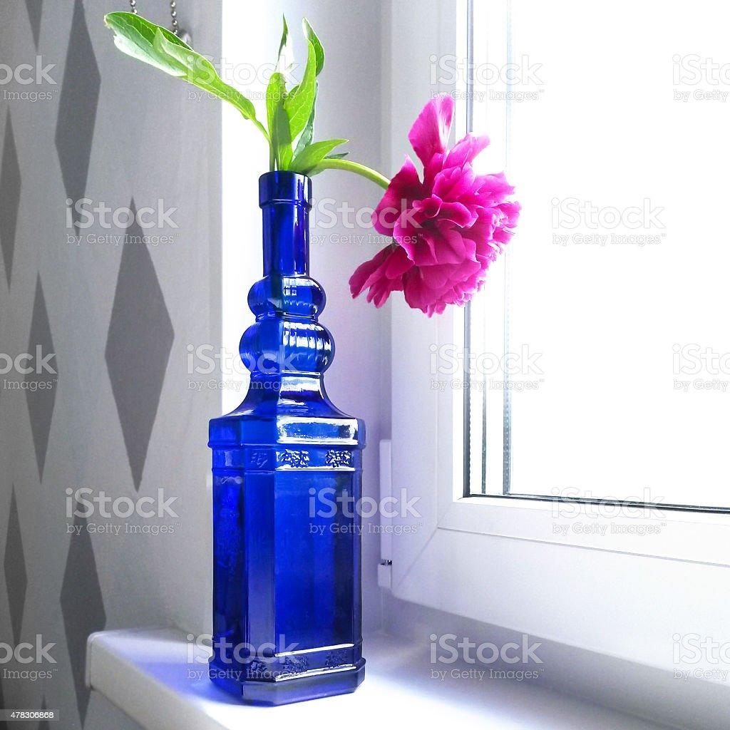 Peony in blue bottle stock photo