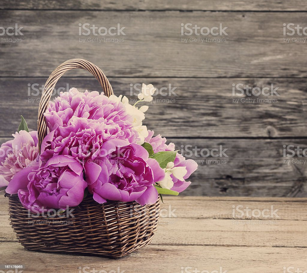 peony on wooden background stock photo