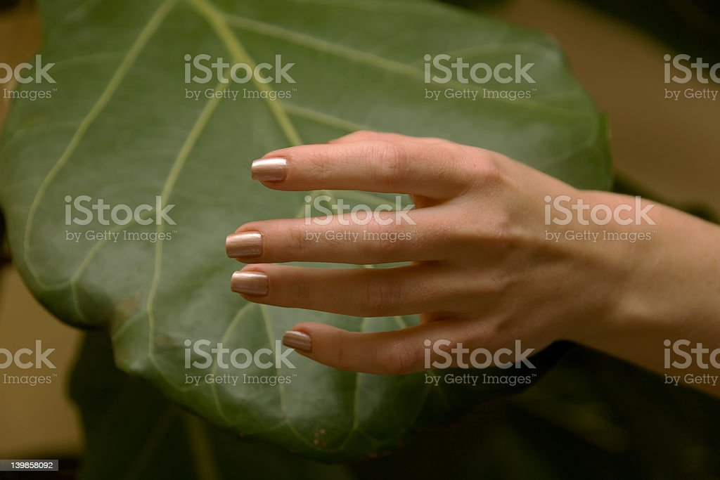people 54 womans hand royalty-free stock photo