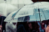 雨の日に横断歩道を渡る人々