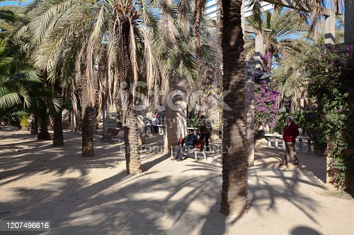 People and seniors in Joan Miro Park in Barcelona. Capture of relaxing people between trees. A senior man with cane is sitting a lone on a bench. A mature couple is sitting in background. More people are in right area.