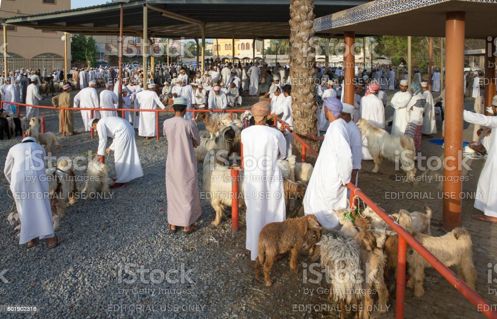 people are gathering before traditional Habta Market where goats are sold, bought and exchanged the traditional way every Friday in Nizwa stock photo