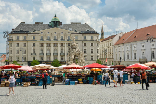 People buying fresh vegetables and fruits on busy cabbage market Brno, Czech Republic - May 28, 2018: People buying fresh vegetables and fruits on busy cabbage market in the centre of Brno, Czech Republic during May 2018 brno stock pictures, royalty-free photos & images