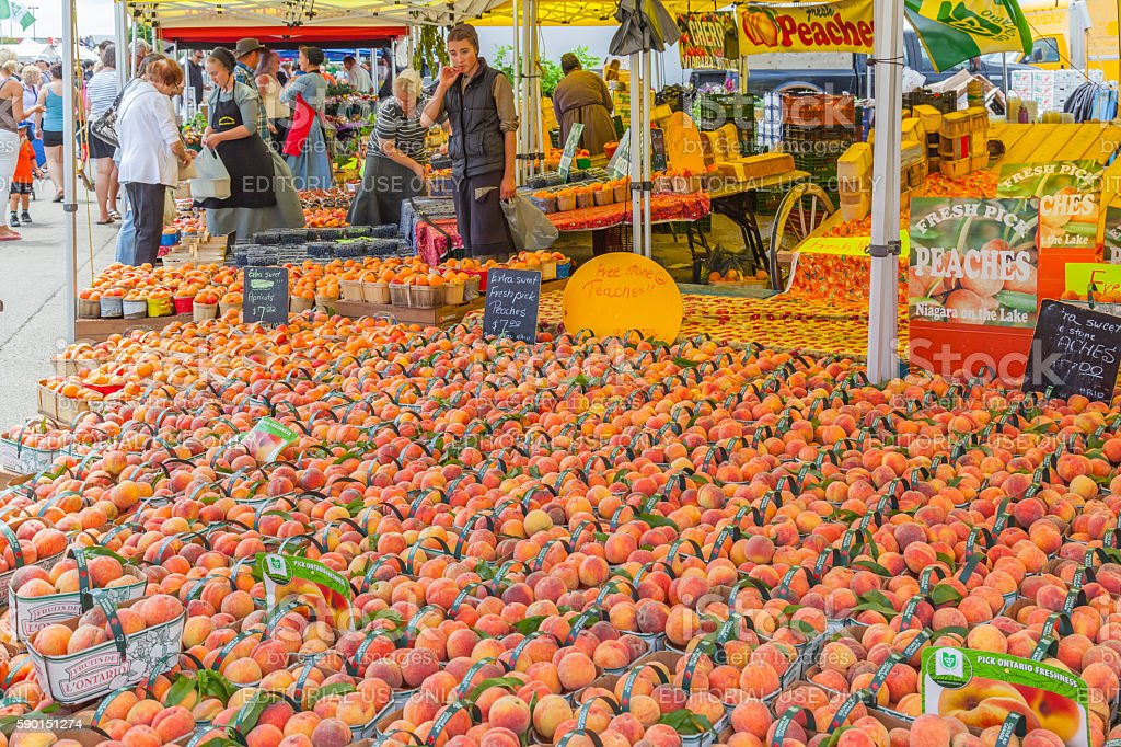 people buying peaches at St. Jacobs farmer's market stock photo