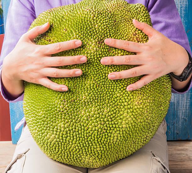 menschen, die große jackfrucht. - jackfrucht stock-fotos und bilder