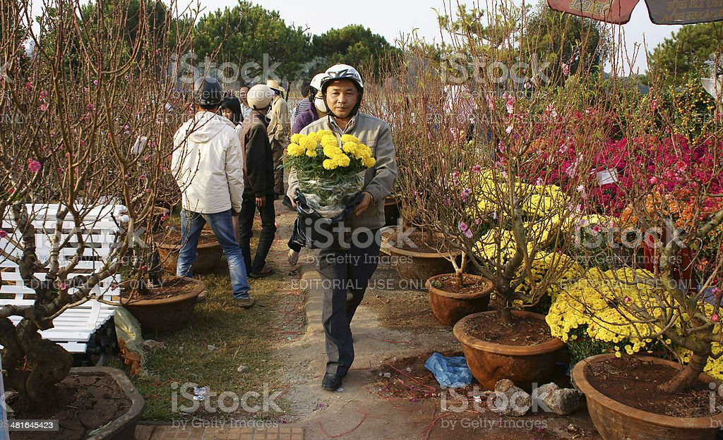 People choice flowerpot at open air farmer market stock photo