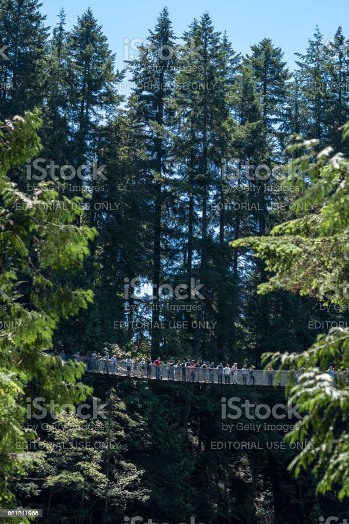 People crossing the famous Capilano suspension bridge on a sunny day stock photo