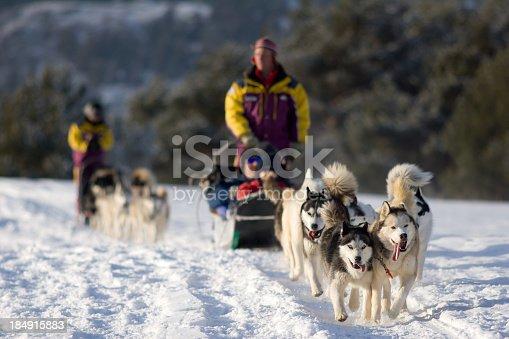 istock People Dog Sledding in Winter Near Mountains 184915883