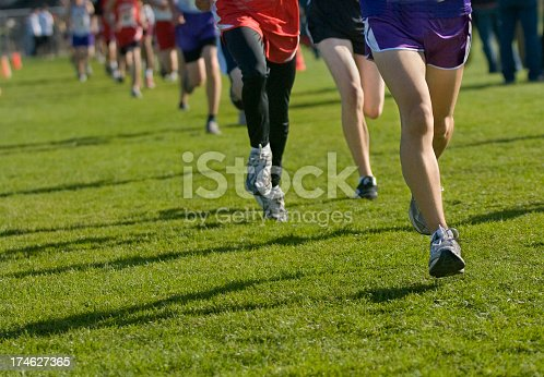 976685710istockphoto People doing cross country running on grass 174627365