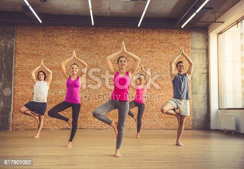 686925362 istock photo People doing yoga 617901002