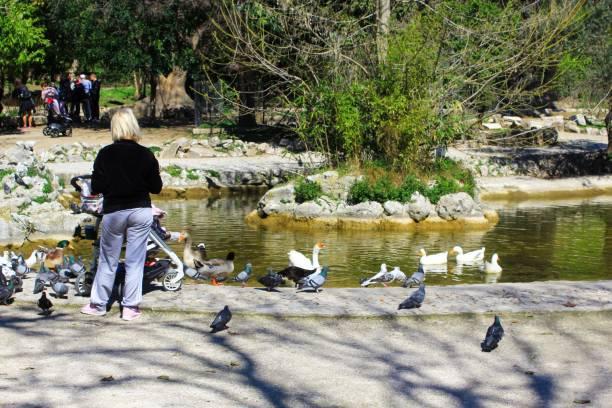 Les gens apprécient une journée ensoleillée à travers le lac artificiel - Photo