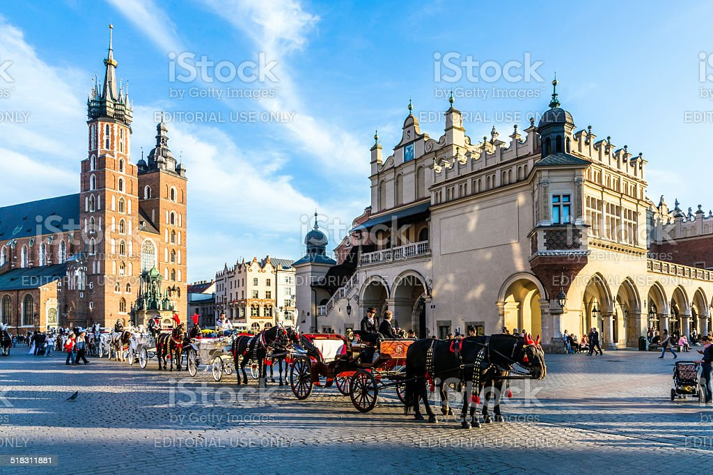 までお楽しみください。馬車での馬 Mariacki 教会の正面 - ウマのロイヤリティフリーストックフォト