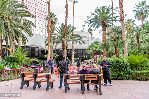 Las Vegas, NV / USA - November 27, 2019: People enjoy the wildlife sanctuary at the famous Flamingo Hotel and Casino, a historic building on the Las Vegas Boulevard strip.