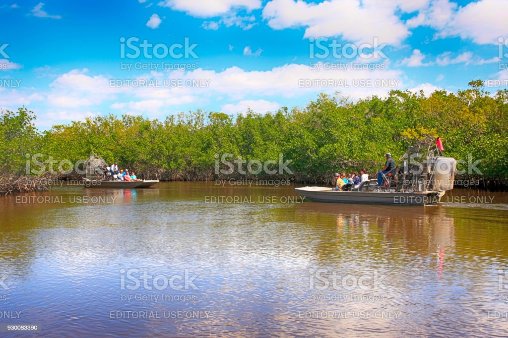 People enjoying an airboat tour of the Everglades mangrove swamps in South Florida, USA stock photo