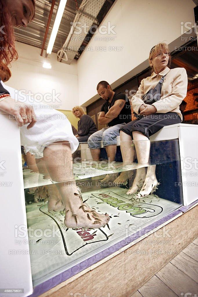 People Enjoying Fish Foot Massage in London royalty-free stock photo