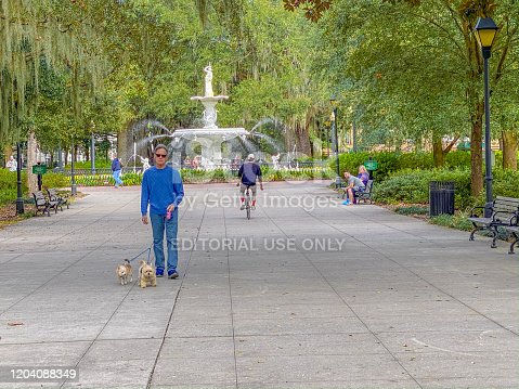 Savannah, United States, January 9, 2020: Senior caucasian man is walking his small dogs and other visitors and residents are in Forsyth Park by the Friendship Fountain during the day in historic Savannah, Georgia. Forsyth Park is a large city park that occupies 30 acres in the historic district of Savannah.
