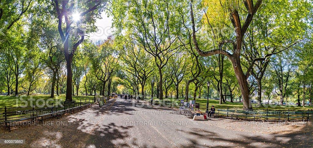 Pessoas beneficiando a caminhar no Central Park foto de stock royalty-free