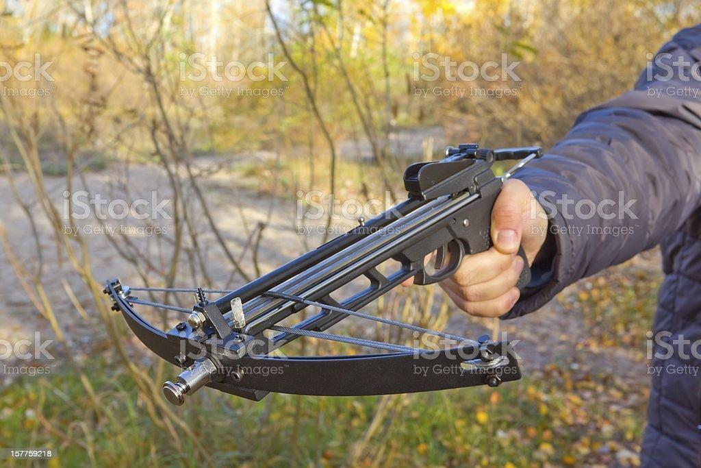 Main tenant un crossbow personnes - Photo